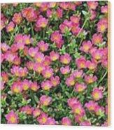 Flower Garden 36 Wood Print