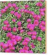 Flower Garden 38 Wood Print