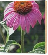 Flower Garden 48 Wood Print