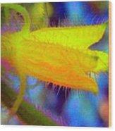Flower - Garden - Cucumber Wood Print