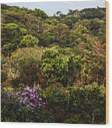 Flower Garden On A Hill Wood Print