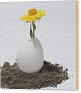 Flower Growing In A Egg Wood Print