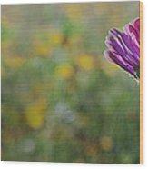 Flower In A Field  Wood Print