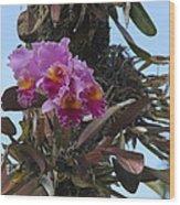Flower In A Tree Wood Print