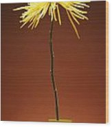 Flower In A Vase Wood Print