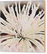 Flower In Bloom Wood Print