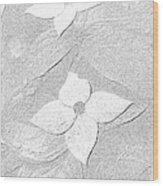 Flower In Pencil Wood Print