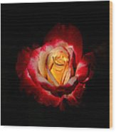 Flower In Red And Gold Wood Print