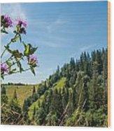 Flower In The Carpathians Wood Print