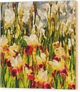 Flower - Iris - Mildred Presby 1923 Wood Print by Mike Savad