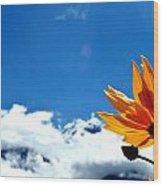 Flower N Hills Wood Print