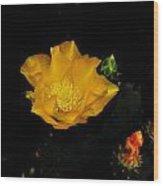 Flower Of The Desert Wood Print