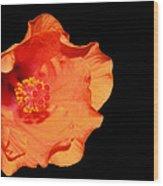 Flower On Fire Wood Print