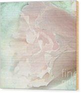Flower On Old Postard Wood Print