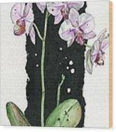 Flower Orchid 02 Elena Yakubovich Wood Print by Elena Yakubovich