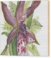 Flower Orchid 10 Elena Yakubovich Wood Print by Elena Yakubovich