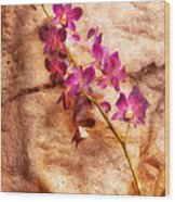 Flower - Orchid - Just Splendid Wood Print