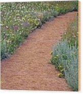 Flower Path Wood Print