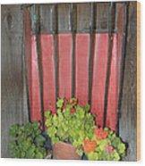 Flower Pots Wood Print