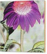 Flower Power 1357 Wood Print