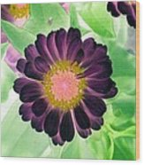 Flower Power 1435 Wood Print