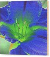 Flower Power 1443 Wood Print