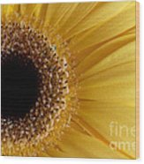 Flower Power All Profits Go To Hospice Of The Calumet Area Wood Print