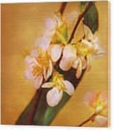 Flower - Sakura - A Touch Of Spring Wood Print