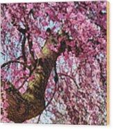 Flower - Sakura - Finally It's Spring Wood Print by Mike Savad
