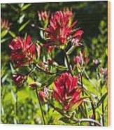 Flower Wood Print by Scott Gould