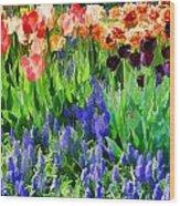 Flower Splash V Wood Print