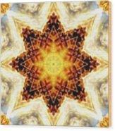 Flower Stars Wood Print