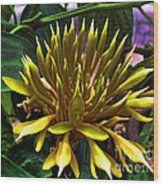 Flower - Sultry Dahlia - Luther Fine Art Wood Print