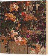 Flower Trellis In La Jolla Wood Print