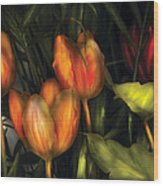 Flower - Tulip -  Orange Irene And Red  Wood Print