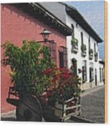 Flower Wagon Antigua Guatemala Wood Print