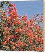 flower wall in Madagascar Wood Print