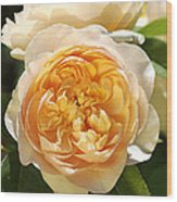 Flower-yellow Roses Wood Print