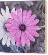 Flower15 Wood Print