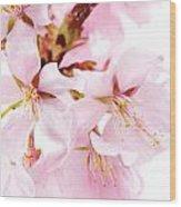 Flowering Cherry Wood Print