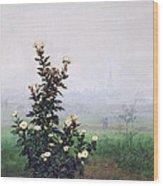 Flowering Chrysanthemum With Worker Wood Print by Leon Bonvin
