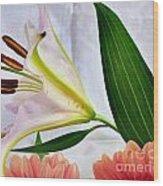 Flowering Wood Print