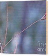 Flowering Moss Wood Print