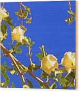 Flowering Tree 1 Wood Print