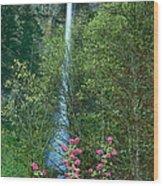 Flowering Tree Below Multnomah Falls Columbia River Gorge Nsa Oregon Wood Print