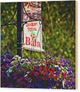 Flowerpot In Bala Wood Print