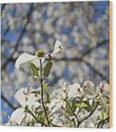 Flowers 149 Wood Print