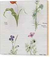 Flowers 1931 Wood Print
