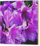 Flowers 2078 Acanthus Wood Print