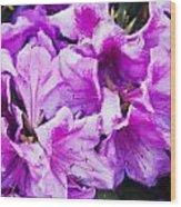 Flowers 2078 Neo Wood Print